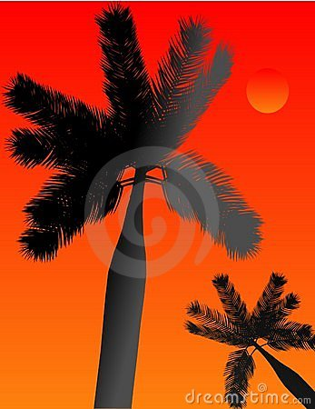 Palm silhoueting a tropical paradise illustration