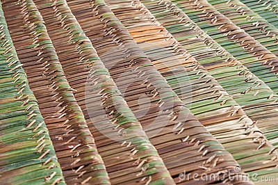 Palm thatch roofs