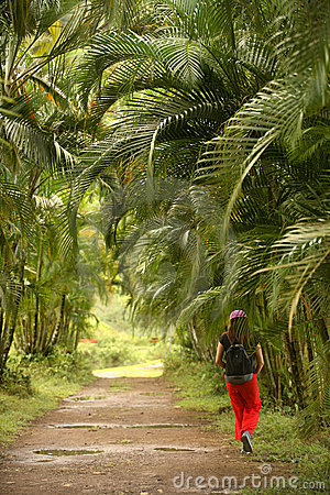 Palm trail