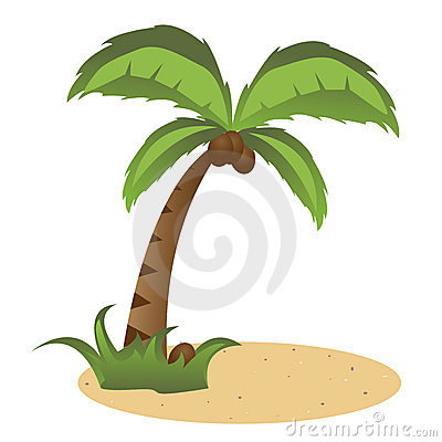 Free Palm Tree Stock Photography - 14124042