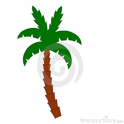 Free Palm Tree Stock Images - 4078344