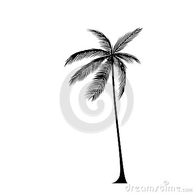 102105116524357698 additionally Draw House Plans Indoor Spaces in addition Ada How To Designbuild Wheelchair R as well Concrete Driveway Stencils additionally Stock Illustration Palm Tree Black Silhouette Isolated Over White Background Image52547099. on driveway home design