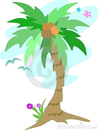 Palm Tree with Coconuts, Stars, and Seagulls