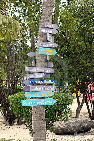 Palm Tree directions