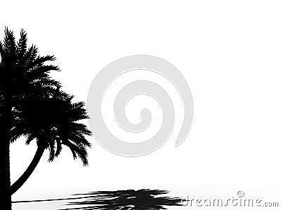 Palm tree silhouette 3d cg