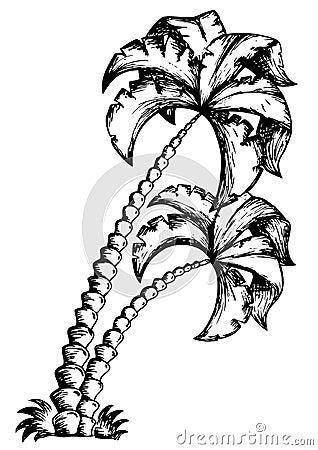 Palm tree theme drawing 1
