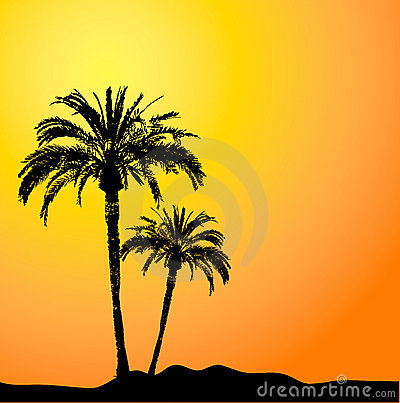Free Palm Trees At Sunset Royalty Free Stock Photography - 648157