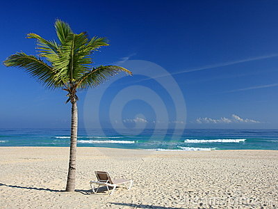 Palm trees and chair on the tropical beach