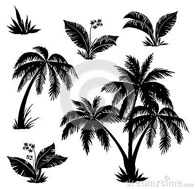 Free Palm Trees, Flowers And Grass, Silhouettes Stock Image - 26247811
