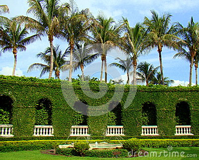 Palm trees and fountain garden in palm beach florida stock image image 29414191 for The fountains palm beach gardens
