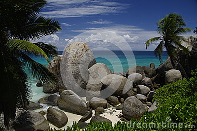 Palm trees and granite rocks at beach, Seychelles