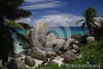 Palm trees and granite rocks at beach, Seychelles