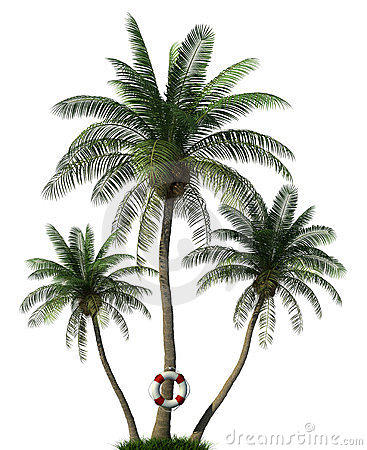 Palm trees and life  buoy
