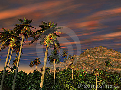 Palm Trees Mountain Sunset