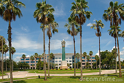 Palm trees and office building
