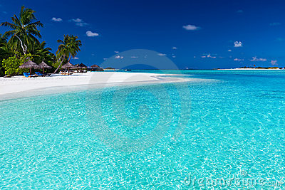 Palm trees over stunning lagoon and white beach