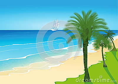 Palm Trees on a Sandy Beach with Sailing Ship