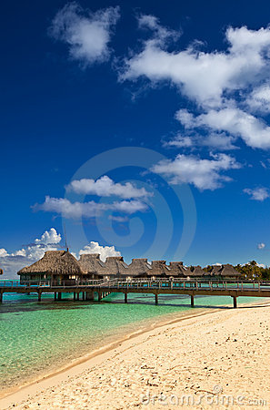 Palm trees and small houses on water.Polynesia