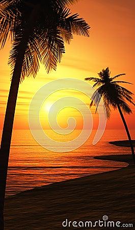 Palm trees on sunset beach