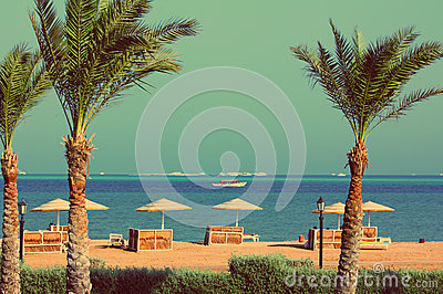 Palm trees and tropical beach - vintage retro style