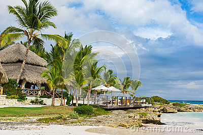 Palm and tropical beach in Tropical Paradise. Summertime holyday in Dominican Republic, Seychelles, Caribbean, Philippines, Bahama
