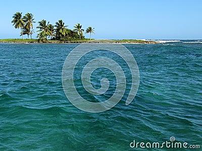 Palm tropical island