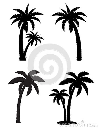 Free Palm Tropical Tree Set Icons Black Silhouette Stock Photography - 39133442