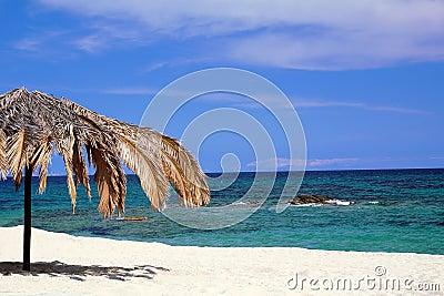 Palm umbrella on the beach