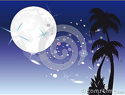 Palm under moon