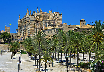 Palma Cathedral with palms, Majorca