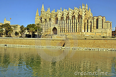 Palmas cathedral