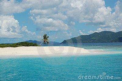 Palme in der Paradies Insel