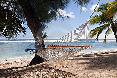 Palme e del Hammock su una spiaggia tropicale