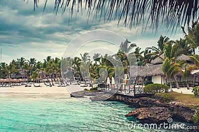 Palme und tropischer Strand im tropischen Paradies. Sommerzeit holyday in der Dominikanischen Republik, Seychellen, Karibische Mee