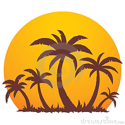 Palmen en de Zonsondergang van de Zomer