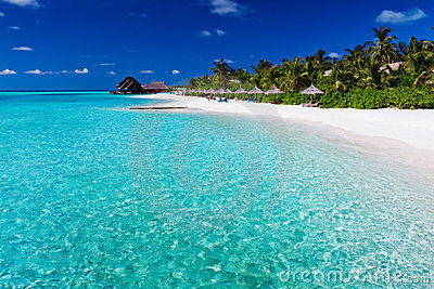 Palmen over lagune en wit zandig strand