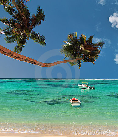 Palmen u. Boote der Paradieslagune.