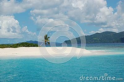 Palmera en la isla del paraíso