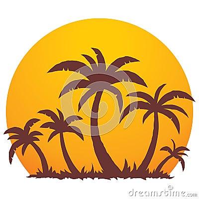 Palmeras y puesta del sol del verano