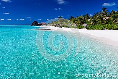 Palmiers au-dessus de lagune et de plage sablonneuse blanche