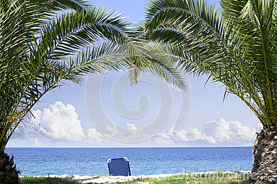 Palmiers de paradis de plage