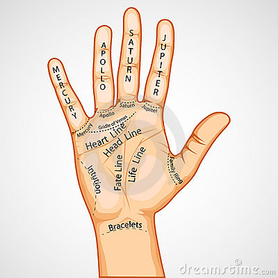 Free Palmistry Map Royalty Free Stock Image - 19616146