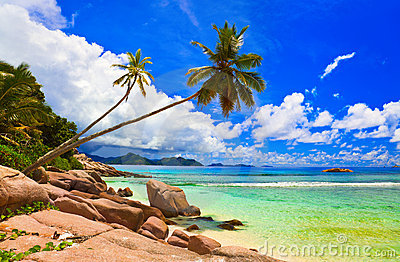 Palms on beach at island La Digue, Seychelles