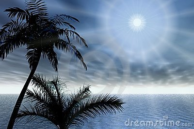 Palms and rays