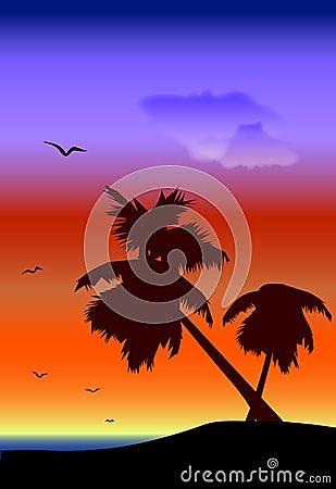 Palmtrees landscape