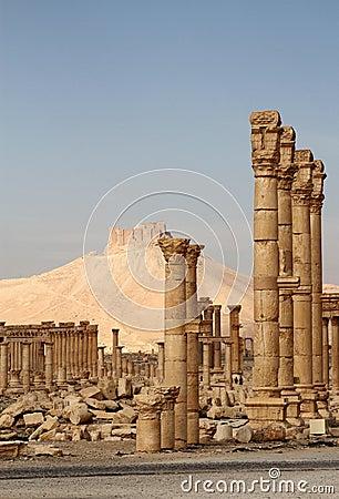 Palmyra ruins and Qala At Ibn Maan Castle