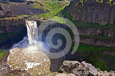 Palouse Waterfalls with Yellow Bellied Marmots