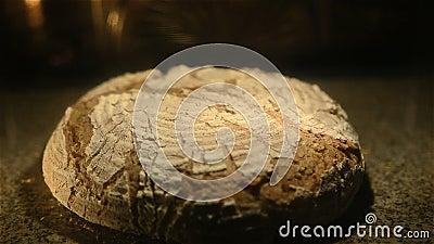 Pan de Rye