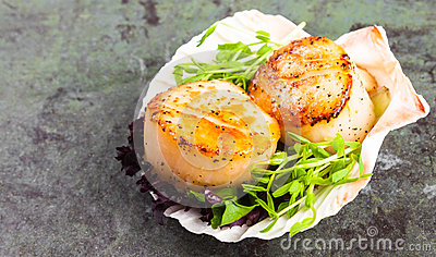 Pan Seared Scallops on a Half Shell