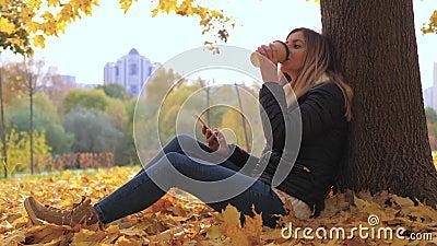 Pan Woman Sitting Near Tree en feuilles jaunes d'automne, utilisations Apps et café potable banque de vidéos